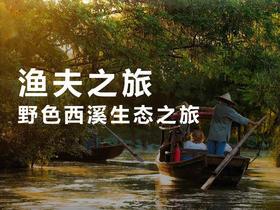 城市之肺野色西溪 回归生态 渔夫之旅一日游