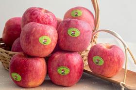 陕西延安洛川新鲜冰糖心苹果