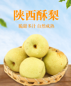 陕西酥梨农户直发 助农产品包邮