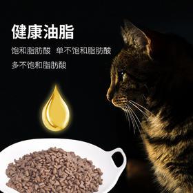 【新品】喜归 |   KMR 全价猫粮 6.8kg(10月龄以上) 第三阶段 - 稳定成长阶段