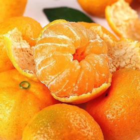 江西特产南丰蜜桔5斤薄皮新鲜甜桔子果园直供