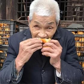 【甜】湖南黔阳冰糖橙 被阳光宠溺的冰糖橙 果实饱满 甜爽多汁 越小越好吃 多规格装