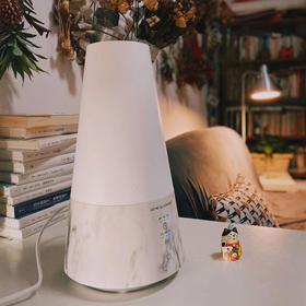 【家奈火山水墨石纹加湿器】不仅能加湿,还能净化水质和空气