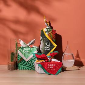 【现货 48h内发顺丰】DAILY LAB 礼包系列,香薰礼物,节日创意礼盒
