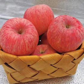 正宗陕西洛川红富士|薄皮苹果 无农药不打蜡 香脆美味|5-10斤装【严选X水果蔬菜】