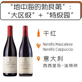埃特纳火山酒庄2瓶套装  Tenuta Delle Terre Nere Etna Rosso 2-bottle Pack