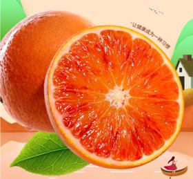 四川塔罗科血橙现摘应季新鲜水果精选9斤装