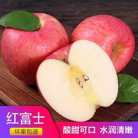 瓦房店闫店红富士苹果 14斤(毛重)应季新鲜水果 大连市内4区包邮