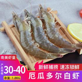 厄瓜多尔白虾30-40  鲜活冷冻新鲜进口大虾 1.8kg
