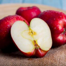 健康美味甘肃花牛蛇果红苹果 清甜可口 富含人体所需微量元素 5斤/10斤装