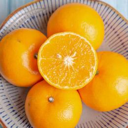 甜润水嫩的云南丽江沃柑 皮薄汁多  产地现摘新鲜直达 5斤装/8斤装