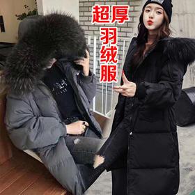 SCMY新款收腰时尚加厚保暖大毛领羽绒服(双十二活动款 只限活动)TZF