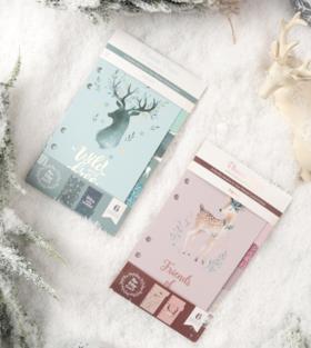 never冰雪系列圣诞a6分隔页索引页替芯活页2色
