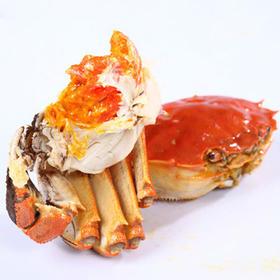 【精选】胡东蟹包邮大闸蟹| 产自阳澄湖 满黄 肉质甘甜可口螃蟹|各5对2.0-3.7公母蟹【生鲜熟食】