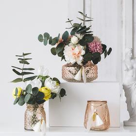 创意小清新玻璃透明花瓶ins客厅桌面摆件插花鲜花水培植物装饰品