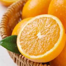 鲜甜爆汁的5/9斤装四川脐橙 果肉细腻无渣 山泉灌溉 橙香四溢 产地现摘新鲜直达