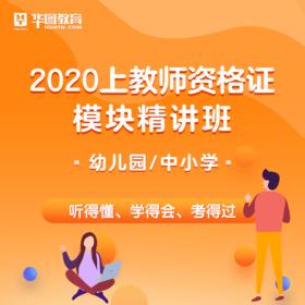2020上教师资格证模块精讲班   幼儿/中小学