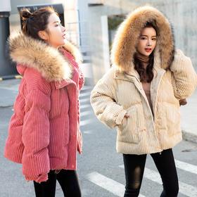 XN-QTLY201B5新款宽松韩版面包棉服TZF