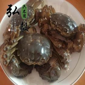 【弘毅六不用生态农场】生态养殖大闸蟹 花津蟹 1对/份(7两左右)