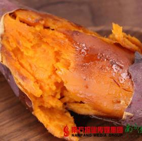 【一件代发】湛江新鲜西瓜红 红薯 4.5斤±2两