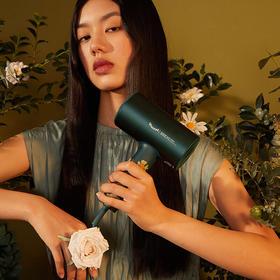 【梵高联名礼盒】素士家用大功率电吹风机 装绿野玫瑰(赠送梵高限定帆布袋)