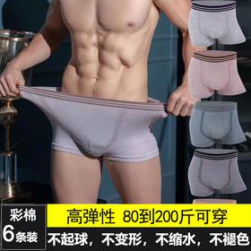 【6条装】男士彩棉内裤保健男平角裤衩男生透气学生青年宽松四角短裤