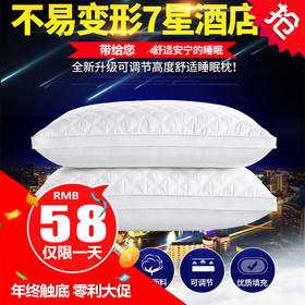JYKJ1688新款可水洗立体羽丝棉枕芯TZF