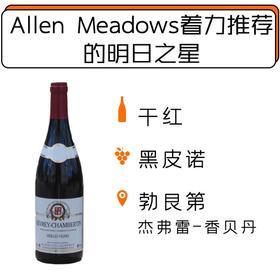 【1.21-2.1停发】2014年阿曼杰夫酒庄杰弗雷香贝丹干红葡萄酒Domaine Harmand-Geoffroy Gevrey-Chambertin Vielles Vignes 2014