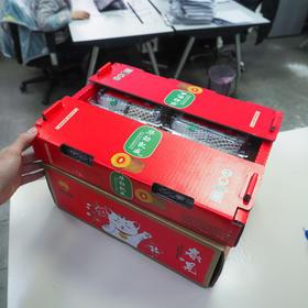 自购四百箱——桔柑+红心猕猴桃【年货套装】