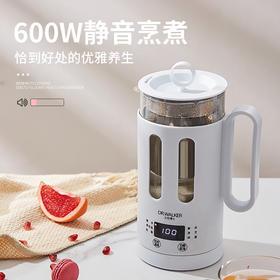 养生壶养生小家电热水煮茶器烧水壶小型煮茶器迷你水壶