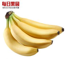 特级佳农超甜高地香蕉 6.9元/斤 精选2.5斤装 菲律宾进口水果-835021