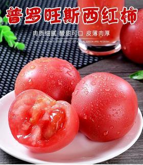 攀枝花普罗旺斯西红柿5斤自然熟沙瓤水果小番茄新鲜当季蔬菜包邮
