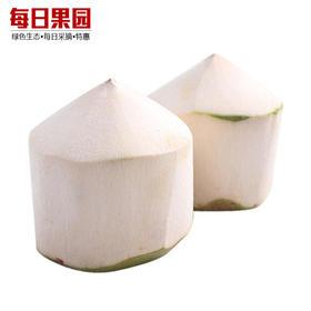 海南三亚削皮椰青 精选1颗装 新鲜采摘椰子-835119
