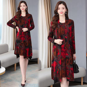 【寒冰紫雨】时尚潮流2件套装 春装长袖中长款连衣裙  拉风开衫女士披风外套  AAA7611
