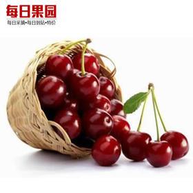 特级智利进口车厘子 精选500g装 大樱桃新鲜水果-835097