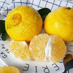 【年后发货】【和平父亲种的】湖南岩垅黄金贡柚新鲜上市5斤装