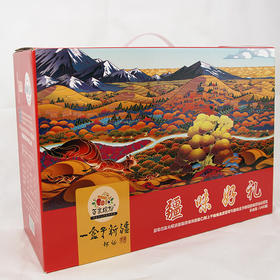 疆味好礼  新年干果礼盒1960g    9种干果  年货必选
