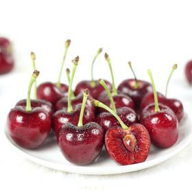 【精品鲜果】智利进口 新鲜水果 Sebastian车厘子JJJ(精品三勾果)5斤装