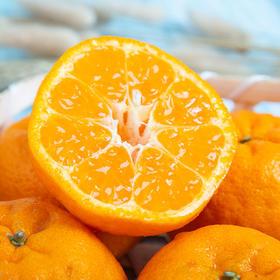 鲜嫩爆汁的庐山西海椪柑 果粒颗颗饱满 柑味浓郁 产地采摘新鲜直达 5斤装