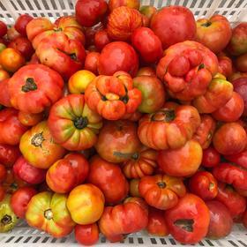 西红柿罐头(原味) 2019