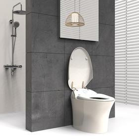宜来卫浴家用坐便器防臭节水静音陶瓷抽水马桶-E-25005J-G智美-金