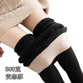 KY-500g秋冬女锦纶护腰打底裤加绒加厚裤袜