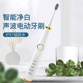【春节预售中】YAZHIZUN电动牙刷成人款超软齿间刷细毛充电式声波家用防水情侣牙刷