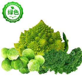 鲜香脆嫩云南蔬菜 细嫩饱满 色泽鲜亮 风味独特 产地现摘新鲜直达 500g装
