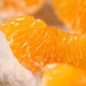 春见粑粑柑3斤 比柑甜、比橙香,肉嫩爆汁不上火