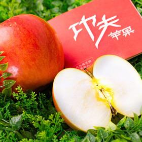 【功夫苹果】等了六年才能吃到的苹果!果香四溢,爆甜爽脆!对标日本青森苹果种植,全程有机可溯源,味道完胜名扬世界的青森苹果!品味高端美味水果,生活就要与众不同