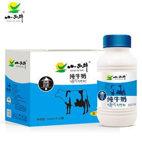 青海 小西牛纯牛奶 高原特色瓶装牛奶243ml*12瓶