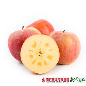 【一件代发】盈香园阿克苏冰糖心苹果  9斤±3两/箱