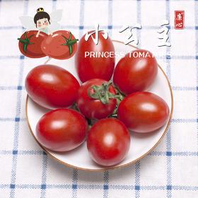 【一件代发】廉心小公主小番茄  3斤±2两/箱