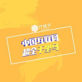 中国互联网千里马公司榜单数据包